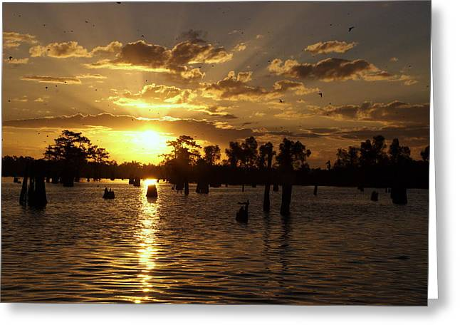 Atchafalaya Sunrise Greeting Card