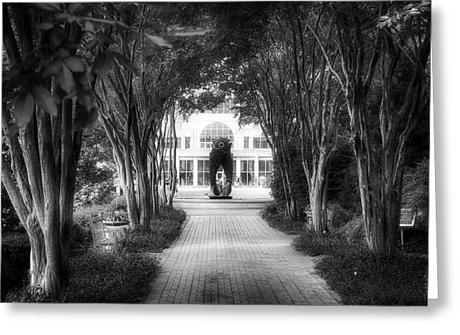 Atlanta Botanical Garden-black And White Greeting Card