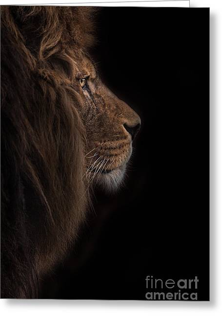 Atlas Burdened No More Greeting Card by Ashley Vincent