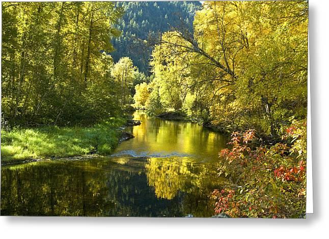 Atnarko River Sunrise Greeting Card by Randy Giesbrecht