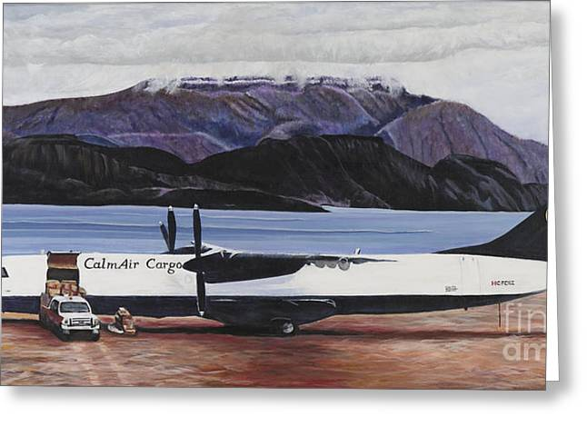 Atr 72 - Arctic Bay Greeting Card by Marilyn  McNish