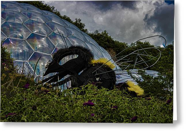 Attack Of The Giant Wasp Greeting Card by Martin Newman