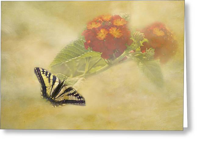 Attraction Greeting Card by Diane Schuster