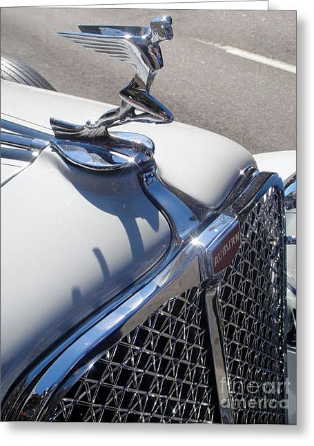 Auburn Hood Ornament Greeting Card by Gregory Dyer