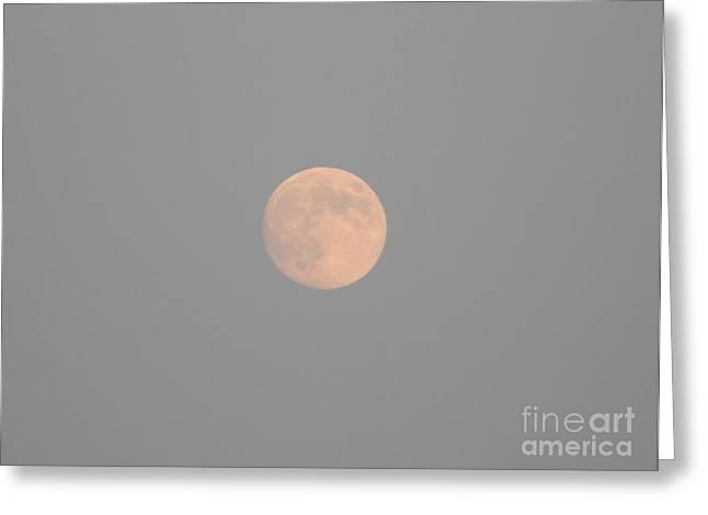 August Full Moon Greeting Card