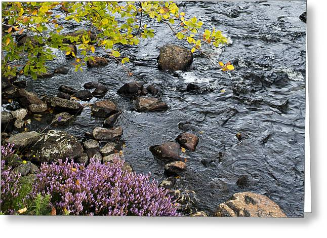 Greeting Card featuring the photograph August Palette Scotland by Sally Ross