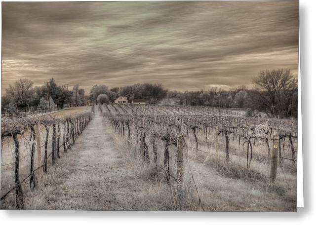 Augusta Missouri Winery Greeting Card by Jane Linders