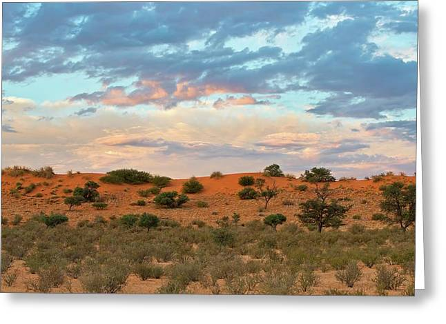 Auob Riverbed With Clouds At Dusk Greeting Card by Tony Camacho