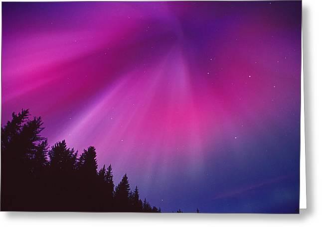 Aurora Corona Over Crow Creek Girdwood Greeting Card by Daryl Pederson