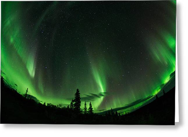 Aurora Embrace Greeting Card