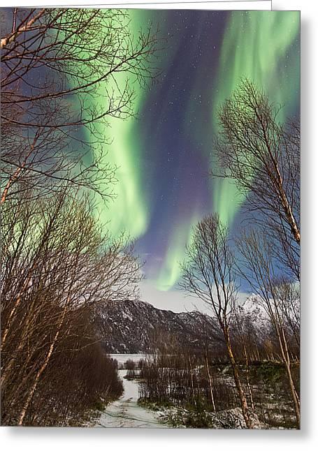 Aurora Road Greeting Card by Frank Olsen