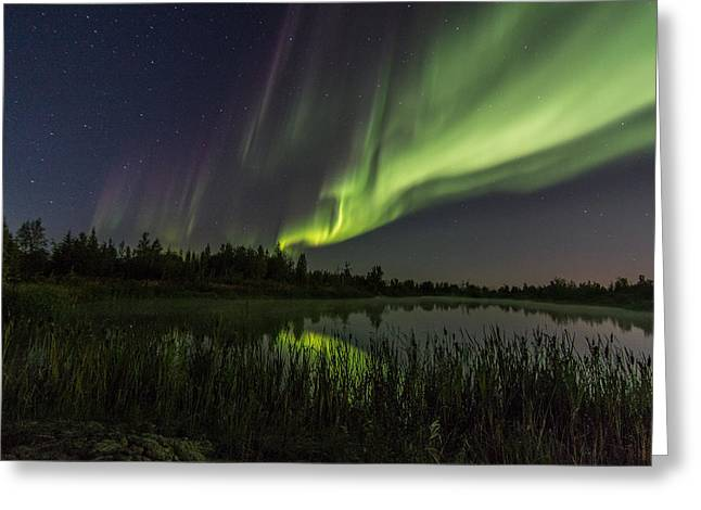 Aurora Waves Greeting Card