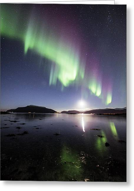 Auroras With The Moon Greeting Card by Frank Olsen