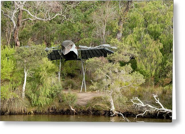 Australia, Albany, Kalgan River Greeting Card