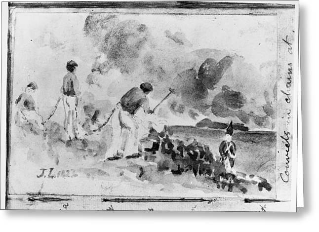 Australia Convicts, 1827 Greeting Card by Granger
