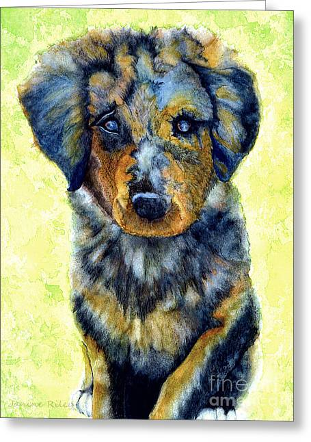 Australian Shepherd Puppy Greeting Card by Janine Riley