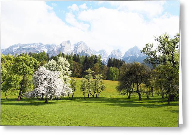 Austrian Landscape In Spring Greeting Card by Brooke T Ryan