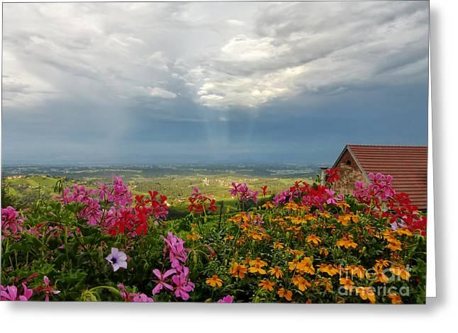 Austrian Landscape Greeting Card by Kasia Bitner
