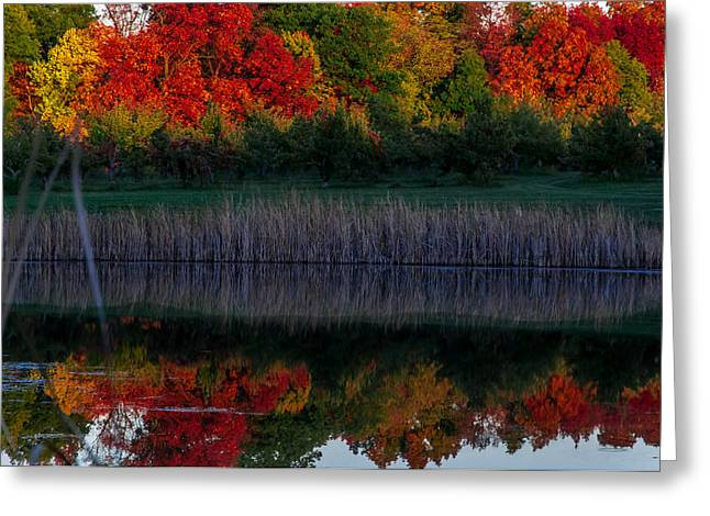 Autum At Orchard Pond Greeting Card by Gene Sherrill