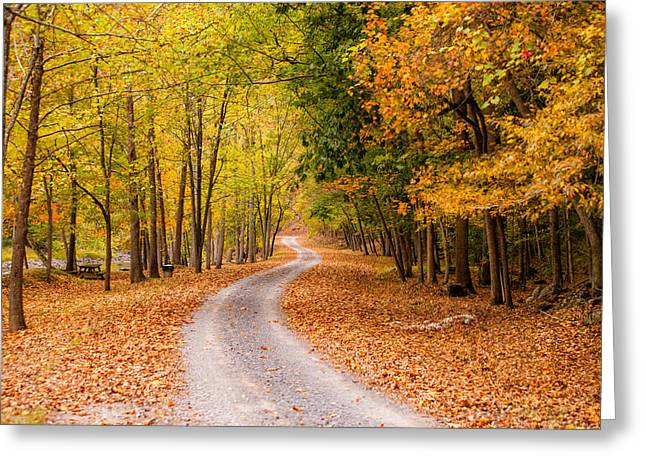 Autum Path Greeting Card by Melinda Ledsome