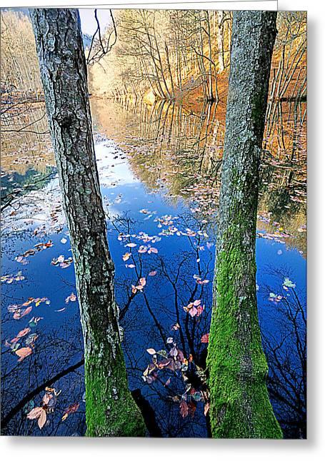 Autumn - 7 Greeting Card