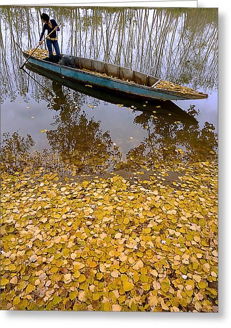 Autumn - 9 Greeting Card