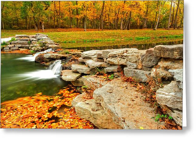 Autumn Ablaze Greeting Card by Gregory Ballos