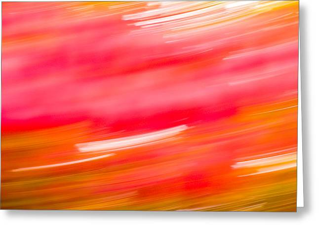 Autumn Abstract Greeting Card by Shane Holsclaw