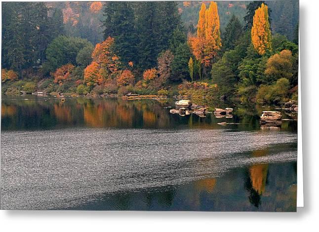 Autumn Along The Umpqua Greeting Card