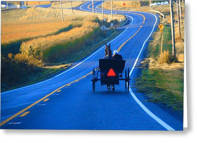 Autumn Amish Buggy Ride Greeting Card by Dan Sproul