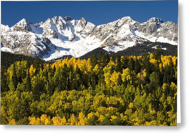 Autumn And Snow Covered Peaks North Greeting Card by Tom Vezo
