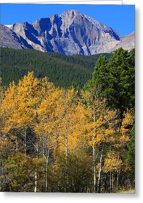 Autumn Aspens And Longs Peak Greeting Card
