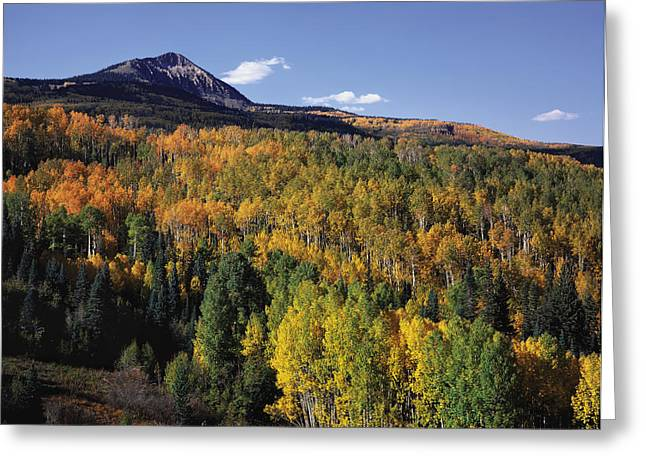 Autumn At Big Baldy Greeting Card
