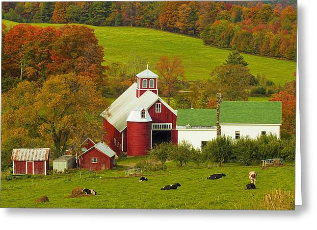 Autumn At Bogie Mountain Dairy Farm Greeting Card
