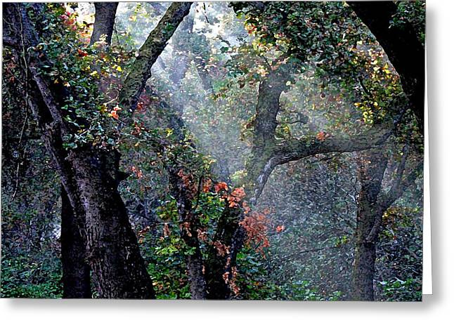 Autumn At First Light Greeting Card