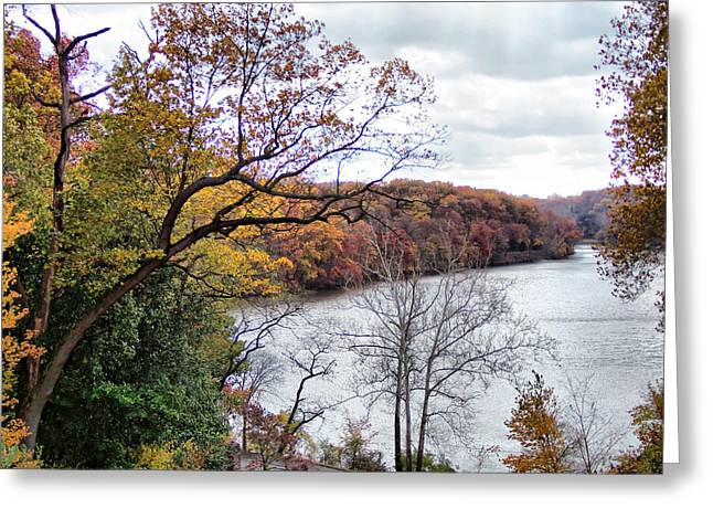 Autumn At Glacier Lake Greeting Card by Monnie Ryan