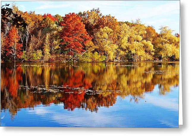 Autumn At Horn Pond Greeting Card by Joe Faherty