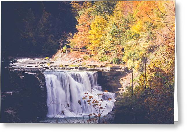 Autumn At Letchworth Greeting Card
