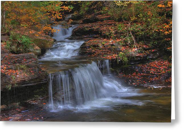 Autumn At Ricketts Glen Greeting Card