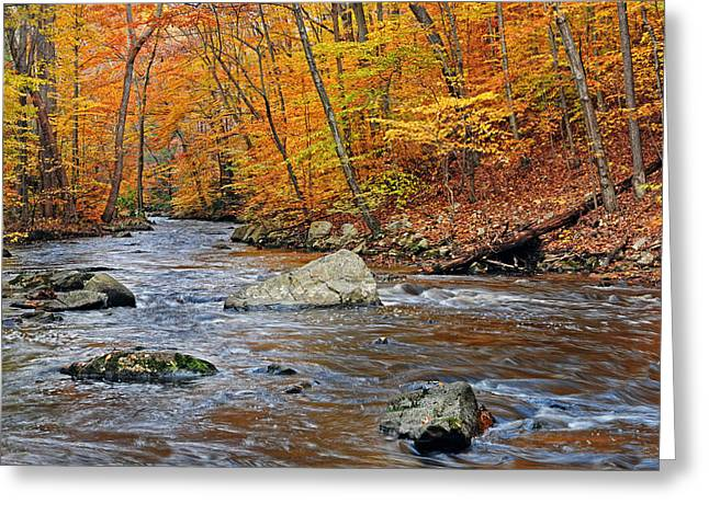 Autumn At The Black River Greeting Card