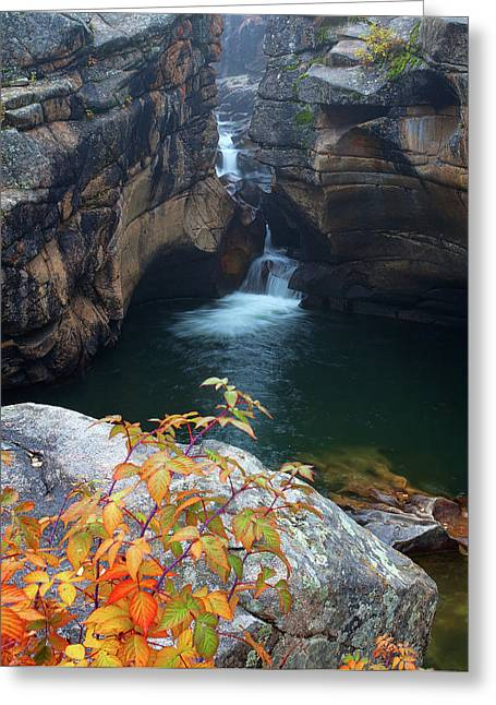 Autumn At The Grotto Greeting Card
