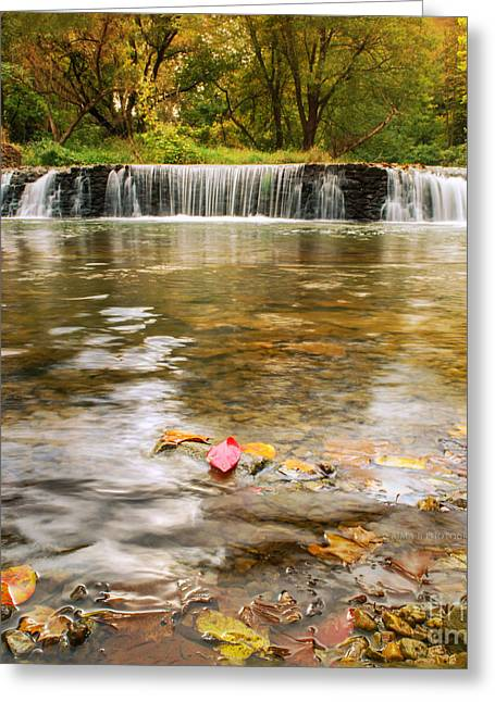 Autumn At Valley Creek Greeting Card