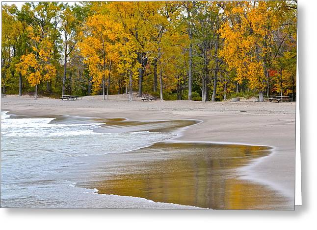 Autumn Beach Greeting Card by Frozen in Time Fine Art Photography