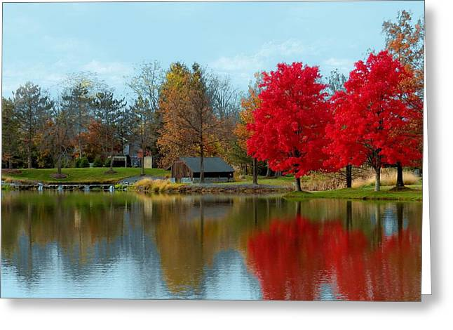 Autumn Beauty On A Pond Greeting Card