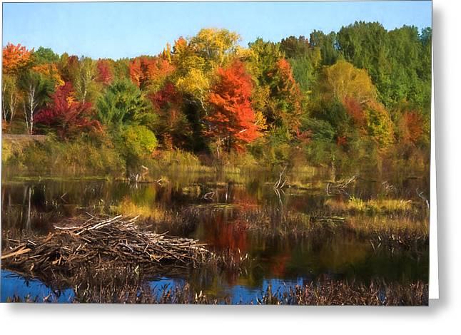 Autumn Beaver Pond Reflections Greeting Card by Georgia Mizuleva