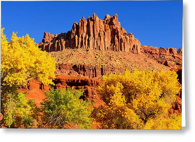 Autumn Beneath The Castle Greeting Card by Greg Norrell