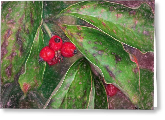 Autumn Berries Greeting Card by Bellesouth Studio