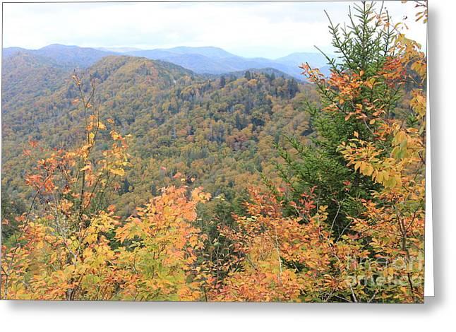 Autumn Bliss Smoky Mountains Greeting Card