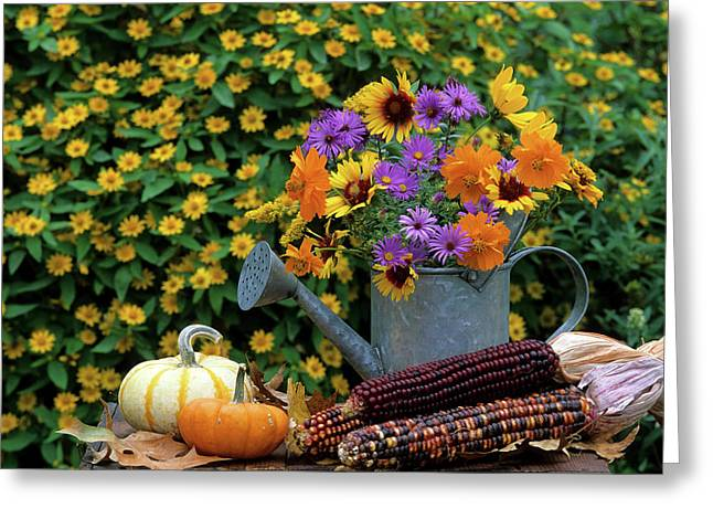 Autumn Bouquet, Asters, Cosmos Greeting Card