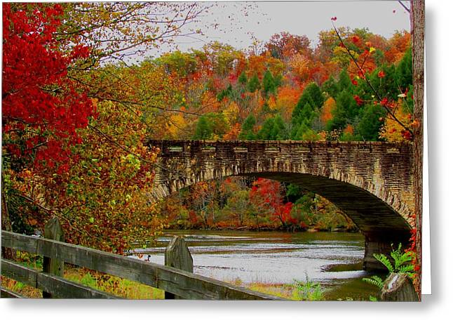 Autumn Bridge 1 Greeting Card